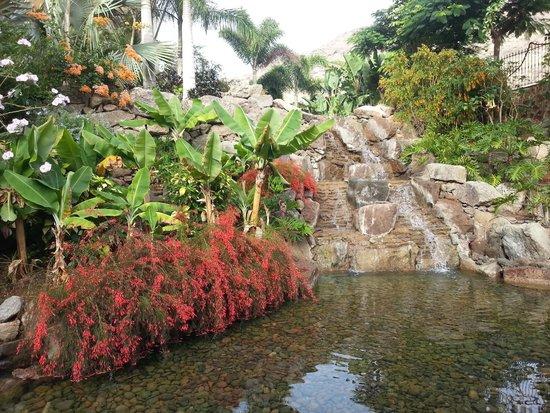 Cordial Mogan Playa: Waterfall at dining hall