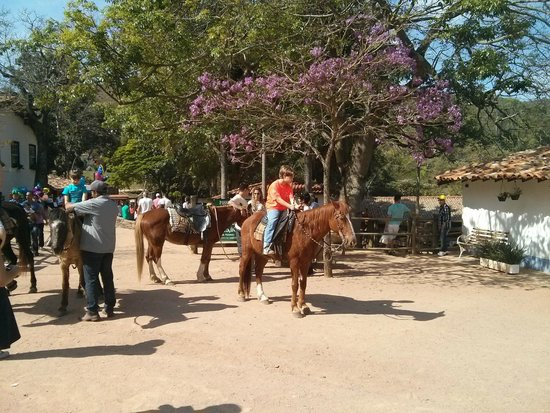 Fazenda do Chocolate: Passeio a cavalo