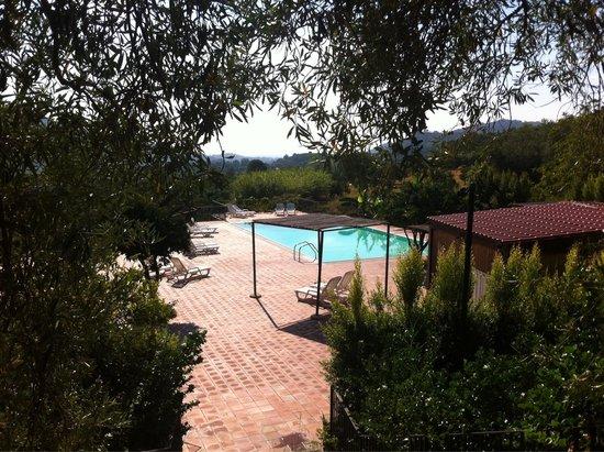 Agriturismo Fondo Cipollate: The pool