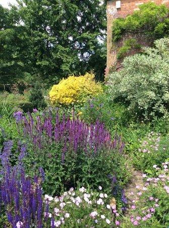 East Lambrook Manor Gardens: Blooming June