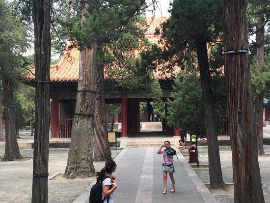 Confucius Temple : Temple
