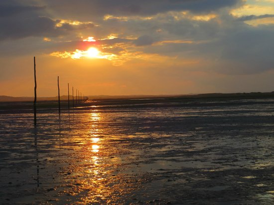 Footsteps - Walking the beauty of Northumberland: sunset over pilgrim route from Lindisfarne