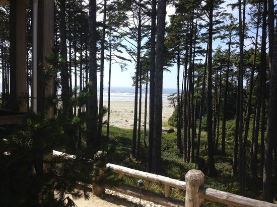 Seabrook Cottage Rentals : Beautiful view from our Seabrook Cottage
