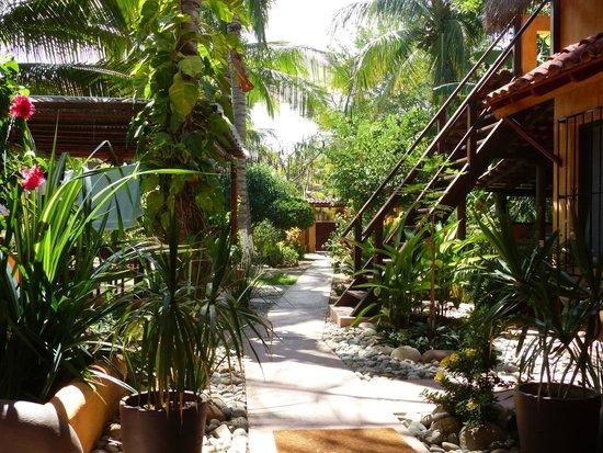 Puerto Escondido Surf House: garden