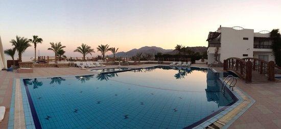 Panda Resort: Pool view