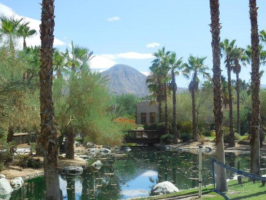 Hyatt Regency Indian Wells Resort & Spa: Mountain View from the gardens