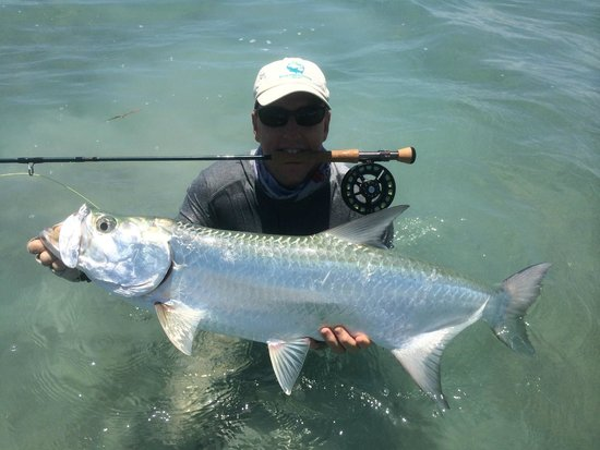 El Pescador Resort: Tarpon first day