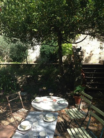 La Petite Nice : Jardin