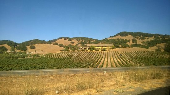 San Francisco Shuttle Tours: Napa Valley