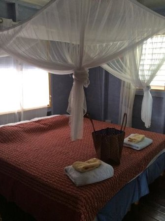 Caribbean Cottage Club : room