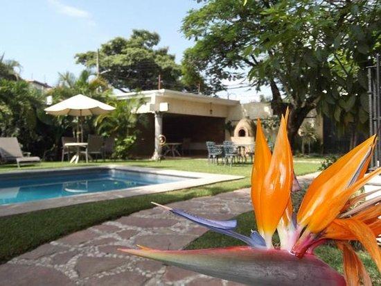 Finca Chipitlan: Vista de los jardines