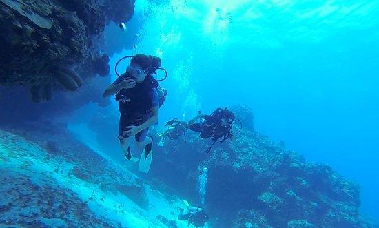 Cozumel Coral Reef Private Scuba Diving: Coral Reef Scuba Dive, Cozumel