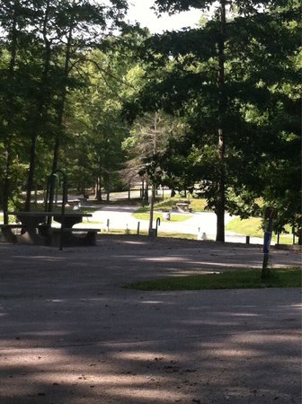 Cumberland Mountain State Park Cabins Campground: View from site 79 in campground 3