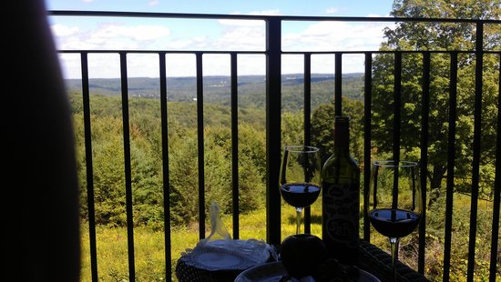 The French Manor Inn and Spa: View from the patio