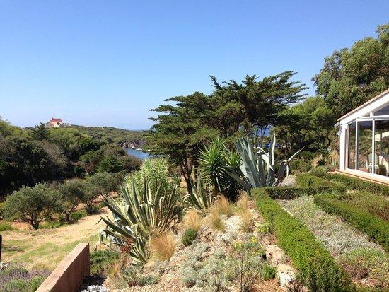 Mas du Langoustier : the view