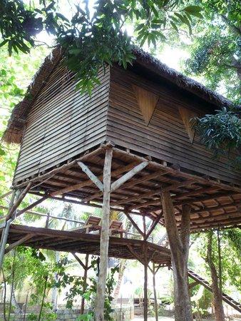 Nosy Lodge : La chambre dans les arbres