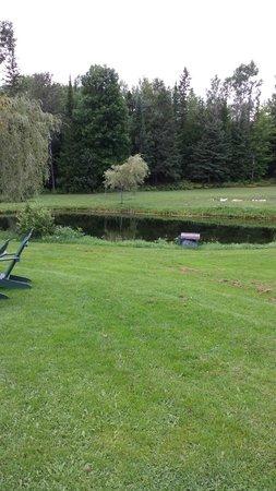 Hidden Valley Motel: another pond