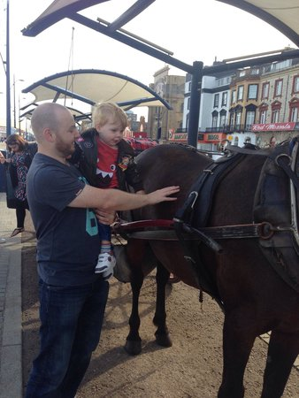 Great Yarmouth Marine Parade: Horse and carriage ride