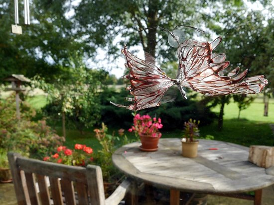 Brymbo Bed and Breakfast: View from the breakfast conservatory into the garden.