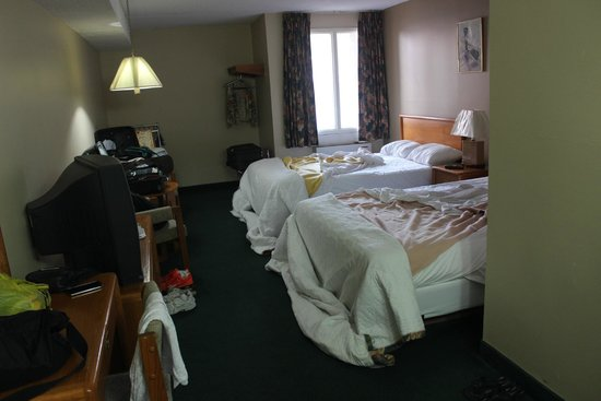 The Diplomat Inn : Apartamento terreo