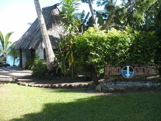The Paradise Taveuni dive shop
