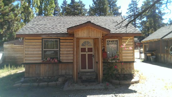 Cabins4less: Our Cabin #31