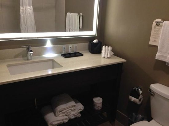 Millennium Minneapolis: Bathroom