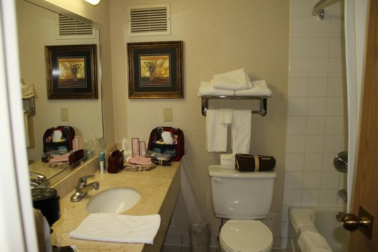 Travelodge Hotel Vancouver Airport: Bathroom