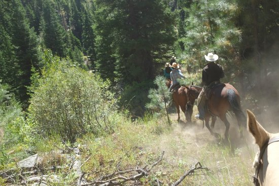 4D Longhorn Guest Ranch : Nice steep trails.
