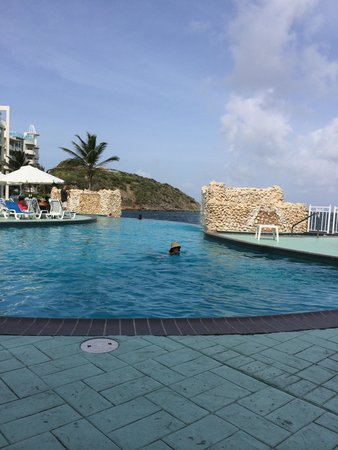 Oyster Bay Beach Resort: The pool