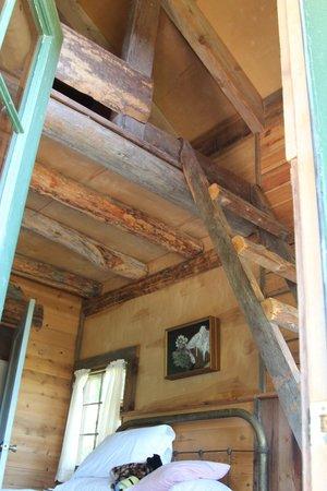 4D Longhorn Guest Ranch: Good Cabins.