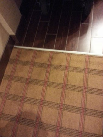 Four Points by Sheraton Niagara Falls : The rug could use vacuumed and cleaned, this is in the room at the entry way