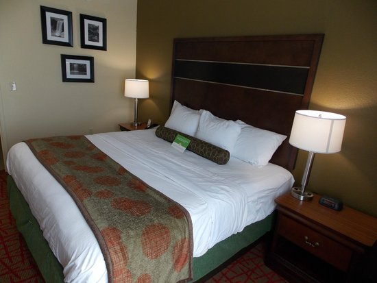 La Quinta Inn & Suites Oxford - Anniston : king room