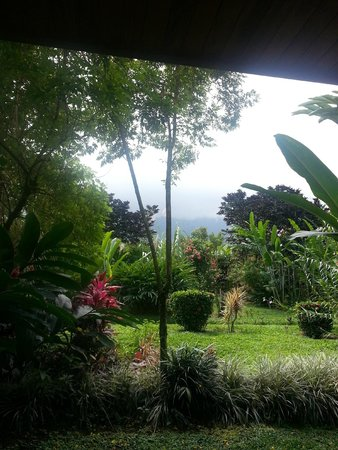 Volcano Lodge & Springs : View from patio of room