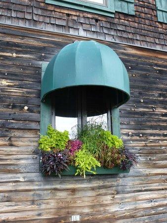 Riverview Lodge : Restaurant window