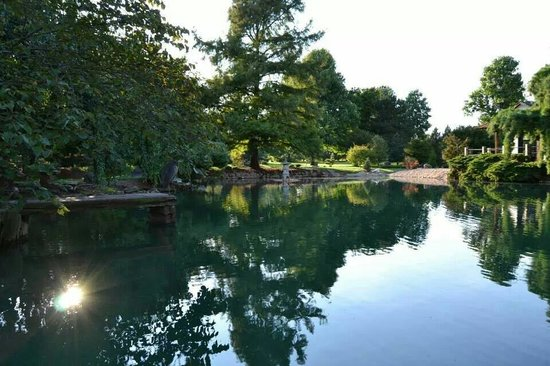 Another Pond Picture Of Mizumoto Japanese Stroll Garden Springfield Tripadvisor