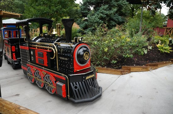 Zoo Knoxville: A New Choo Choo for the kiddies
