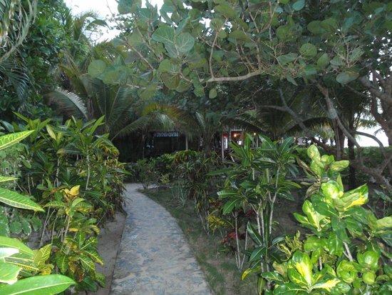 Las Rocas Resort & Dive Center: Grounds of Las Rocas