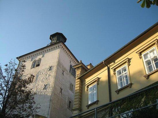Upper Town (Gornji Grad) : Kula Lotrščak