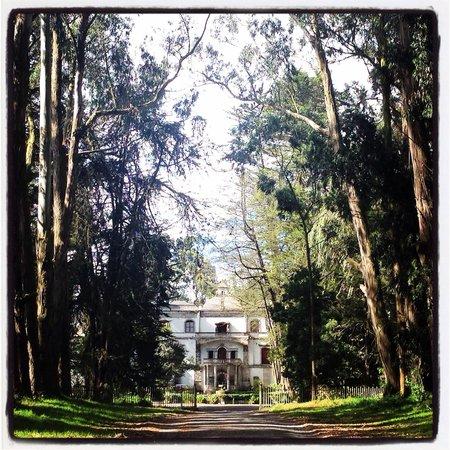 Hacienda La Cienega : Entrada hacia la Hacienda