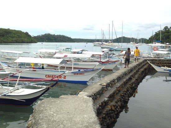 Badladz Dive Resort: Waiting to board the dive boat