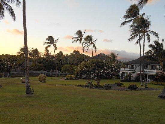 Poipu Kai Resort - Suite Paradise: テラス前で。