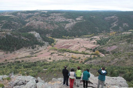 Noguera de Albarracin, Spain: Observando la berrea