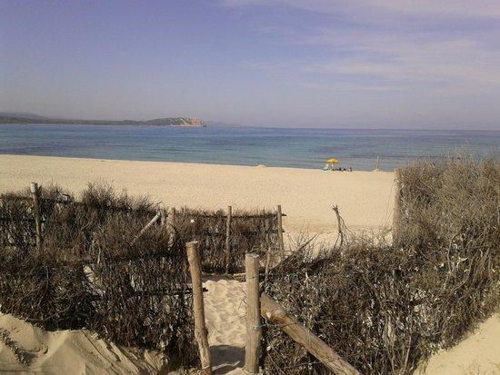 Camping La Liccia: Spiaggia Rena Majori