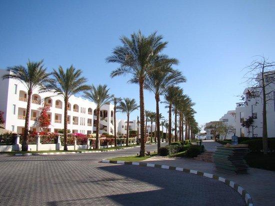 Cyrene Island Hotel: территория отеля