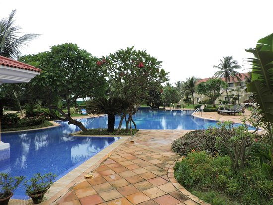 The Hans Coco Palms : Pool Area