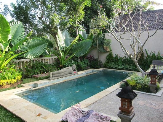 Lily Lane Villas: Our private pool at our villa