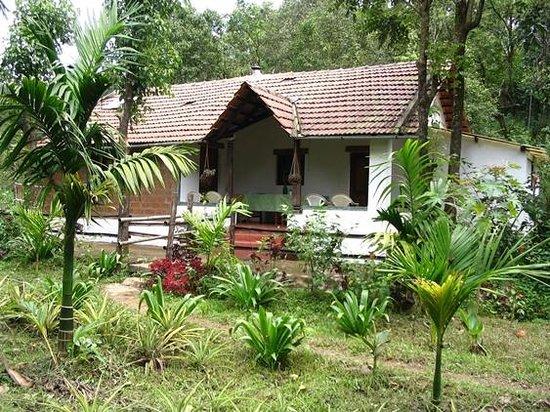 Rainforest Retreat Eco-lodge