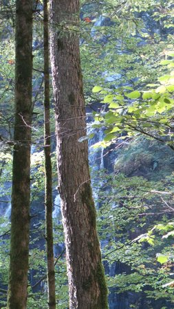 Logis de la Grande Cascade: la cascade d'où le nom du restaurant
