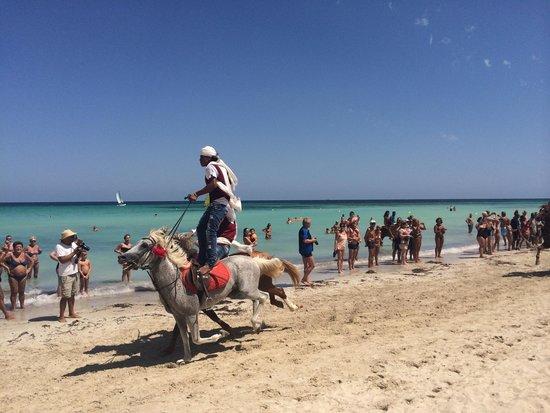 Seabel Rym Beach : Spettacolo con i cavalli sulla spiaggia giornata tunisina